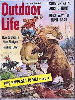 схватки с медведями-1