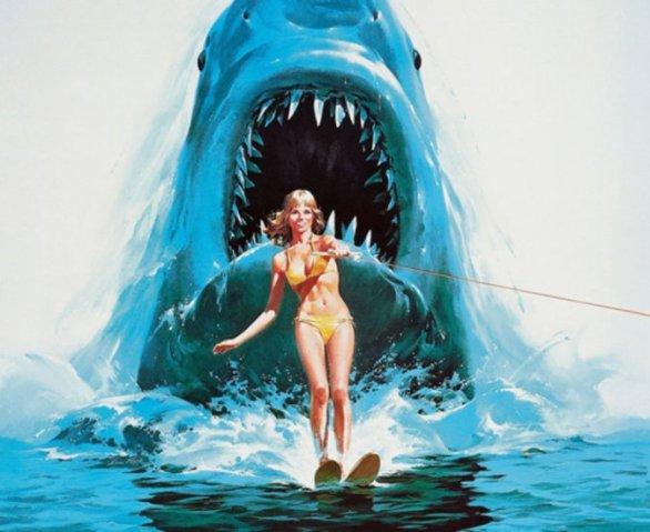 акулы-1