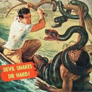 нападения змей-1