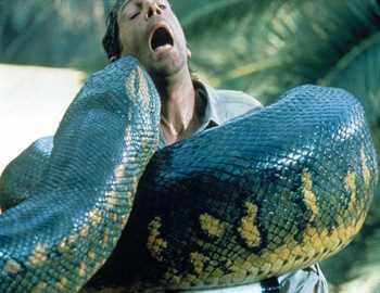 Большие змеи-2