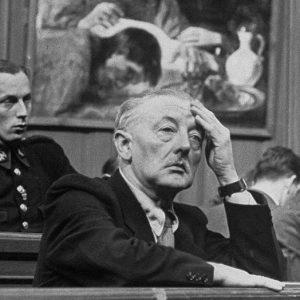 Меегерен в суде
